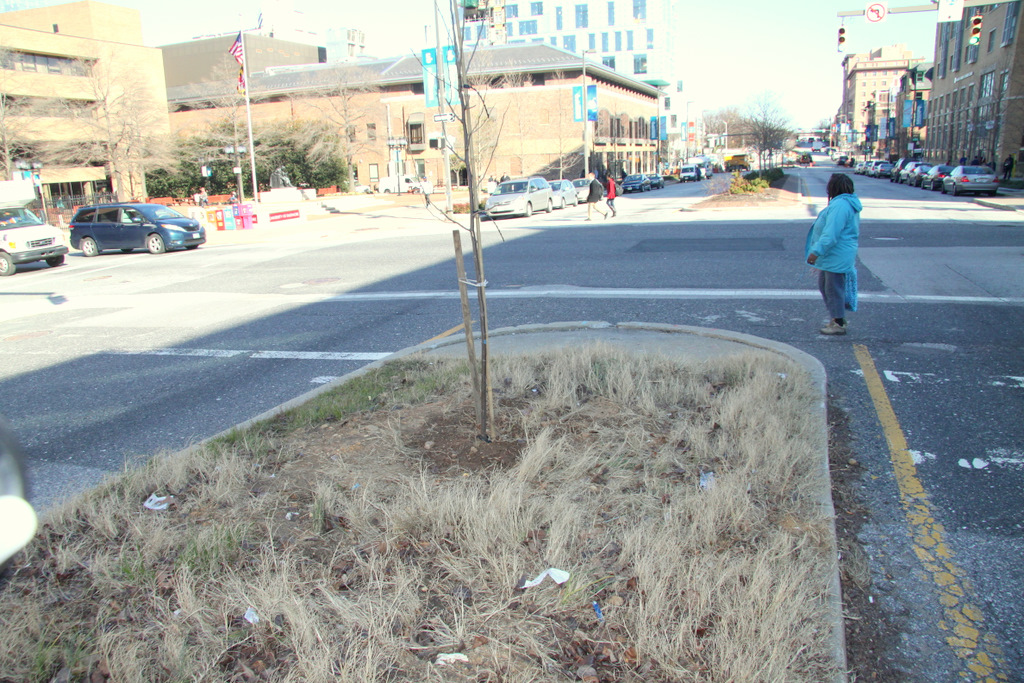 Mount Royal median near the University of Baltimore could use some love. (Photo by Fern Shen