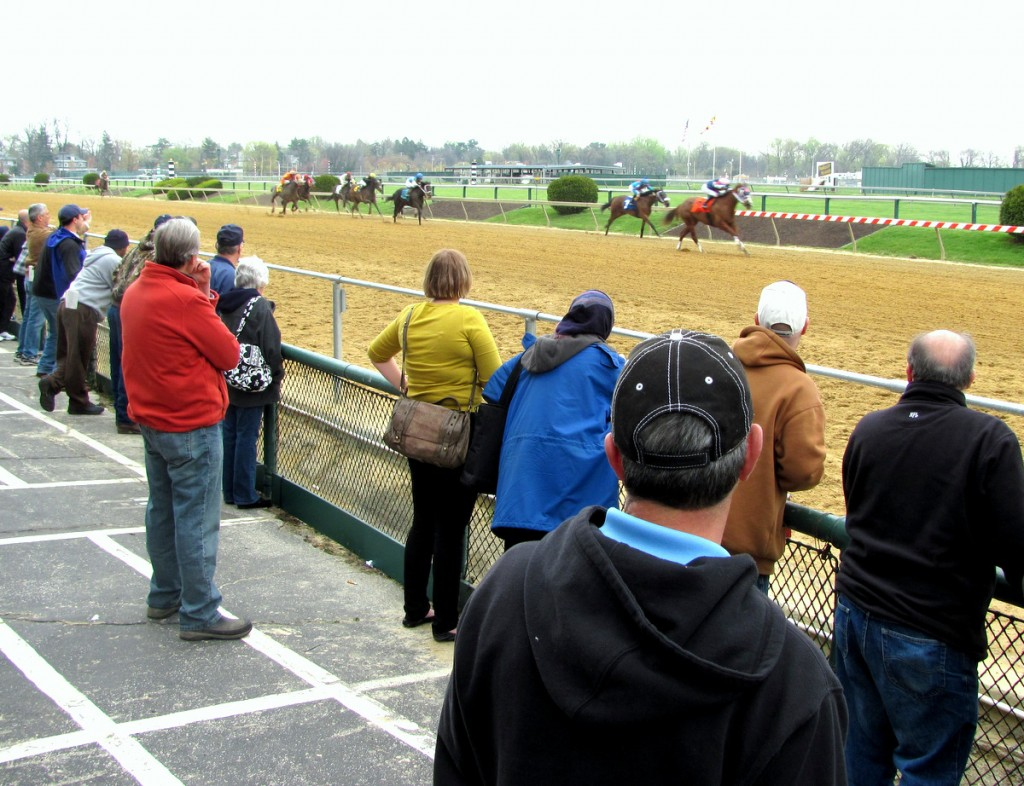 Railbirds hang on to the running of one of the seven dirt races yesterday. (Photo by Mark Reutter)