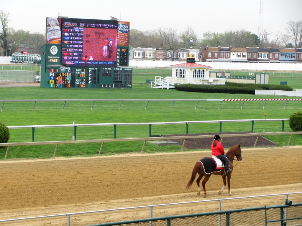 An outrider, or mounted escort, waits to lead a racehorse to the starting gate. (Photo by Mark Reutter)