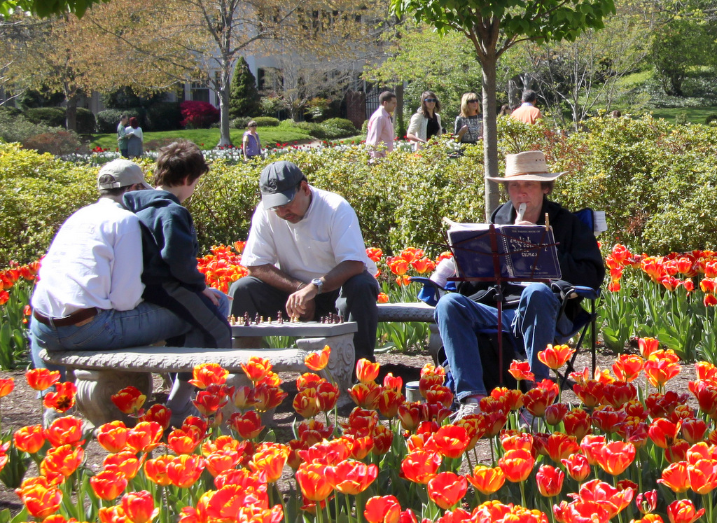 A flute solo, a chess game and many other spontaneous activities had Sherwood Gardens buzzing yesterday. (Photo by Fern Shen)