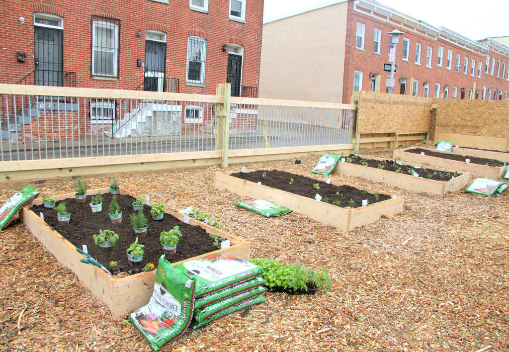 Parks & People Foundation cleared and prepared the lot and Scotts Miracle Gro contributed $25,000 for plants and other planned expenses. (Photo by Fern Shen)