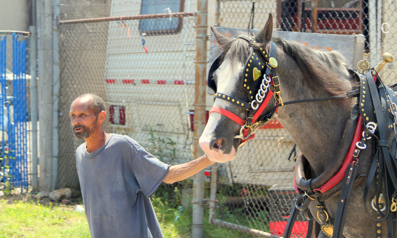 Dennis Randall lives at the stable and cares for the horses there. (Photo by Theodore Epstein)