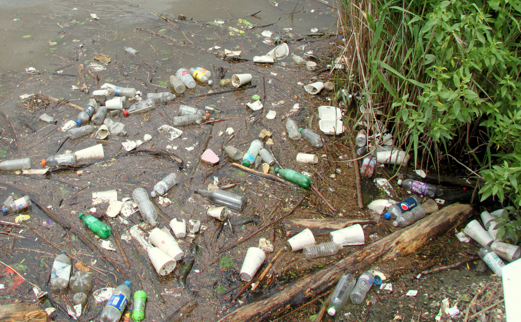 Lots of polystyrene - plus plastic bottles - floating ni the Middle Branch, near Nick's Fish House last week.