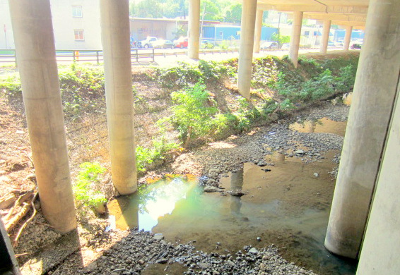 Yesterday (7/18/13) a bluish-white effluent was coming out of this pipe at the Union Avenue bridge. Later that day, downstream near the Inner Harbor, dead fish were found in milky white water. (Photo by Teresa Duggan)