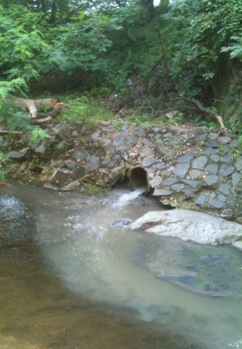 Sewage overflowing into Stony Run this morning. (Photo by Anand Pandian)