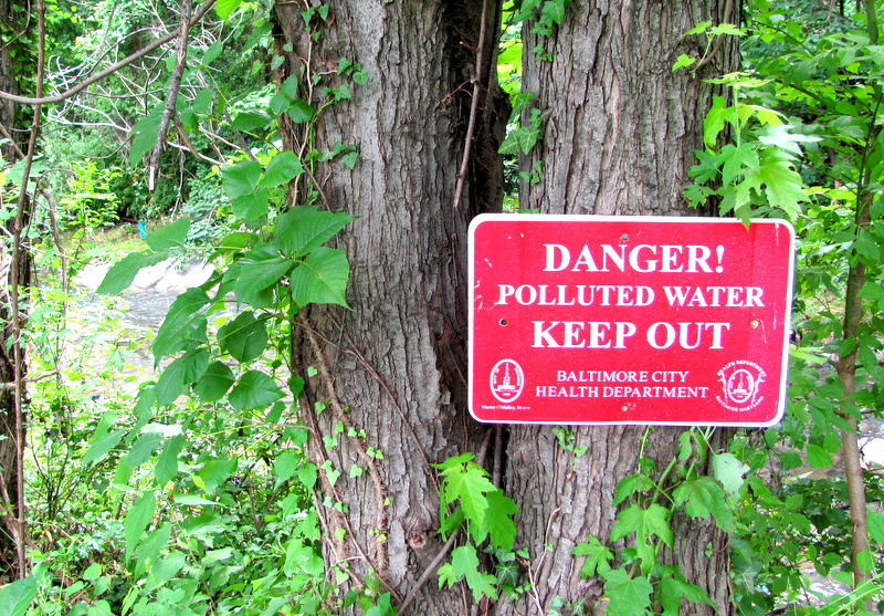 This sign along sewage-laden Gwynns Run (seen behind the leaves) was posted when Martin O'Malley was mayor.