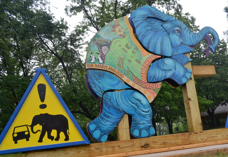 Elephant sculptures  near the Maryland Zoo in Baltimore. (Photo by Tyler Waldman)