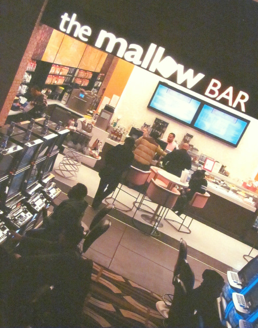 The Mallow Bar was the scene of a early morning fight on January 17  between two groups of females.