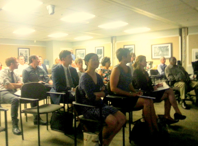 Audience at the UDARP meeting on July 2 when a numbe rof panel members expressed concerns about the McKeldin replacement plan. (Photo by Ed Gunts)