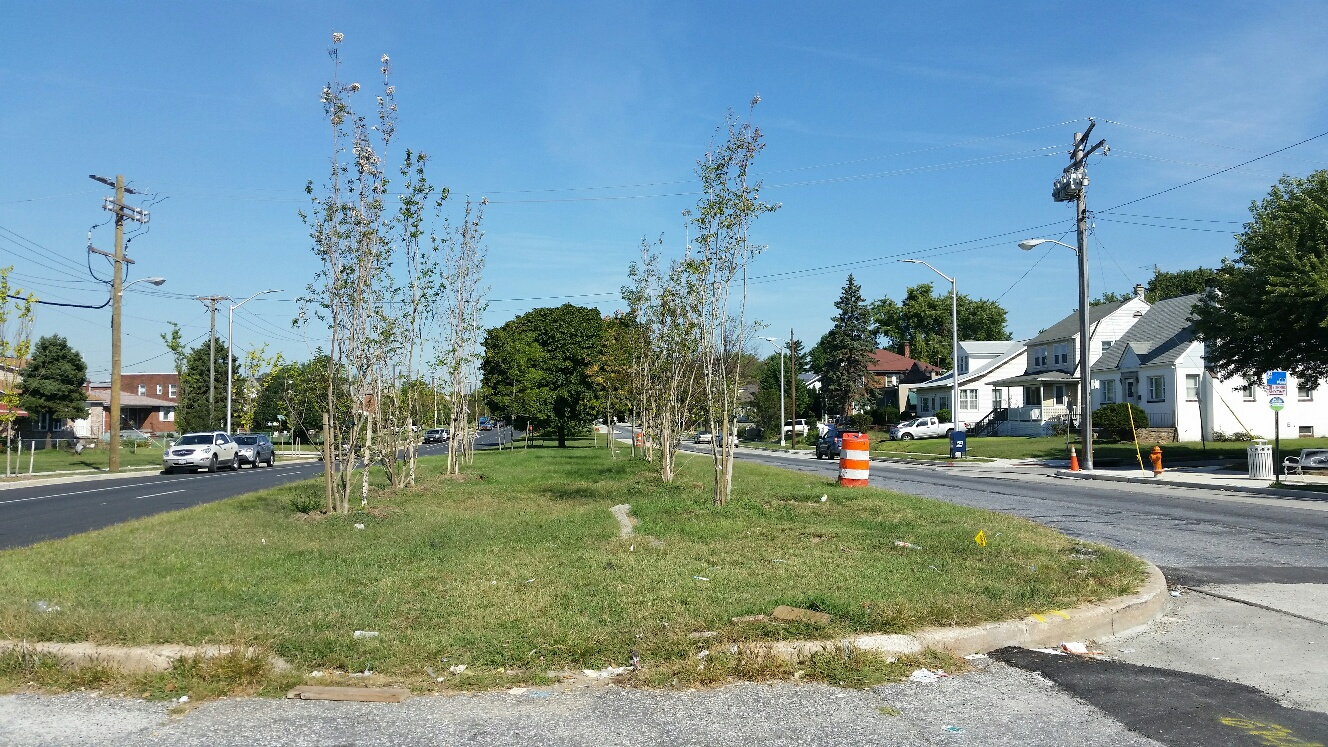 The trees were spindly and curbs ragged along portions of the Dundalk Avenue Streetscape yesterday. (Photo by Mark Reutter)