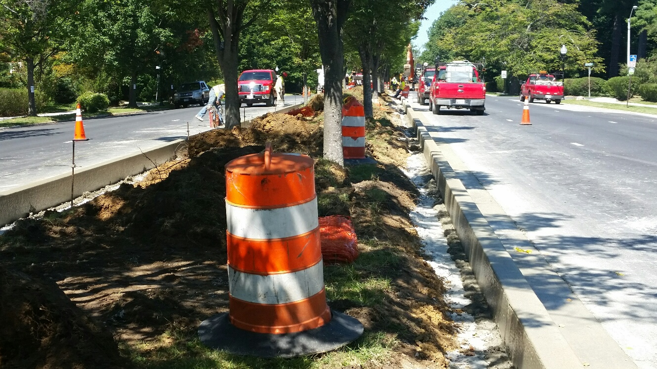 New higher curbs have been installed along the Roland Avenue median strip. But will the trees survive? (Photo by Mark Reutter)
