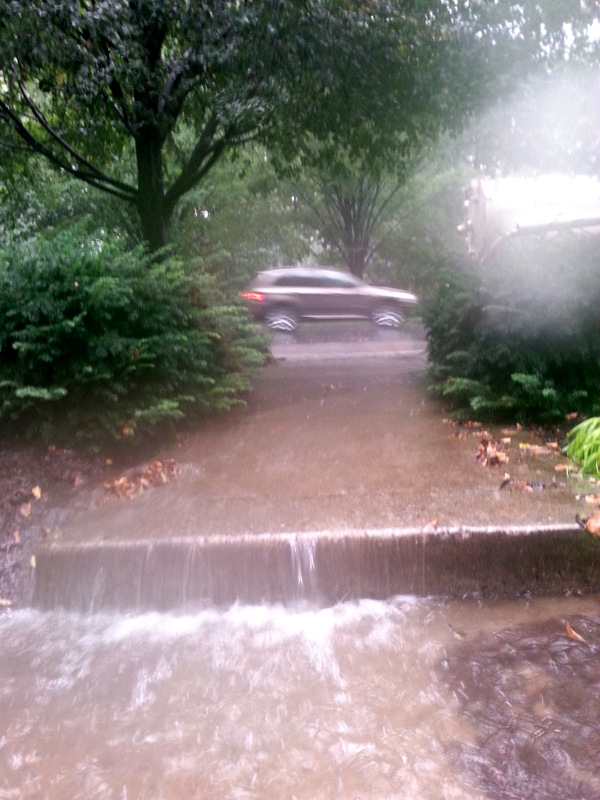 Water racing down Barbara Brocato's front walkway from Roland Avenue during a storm on August 24. (Photo by Barbara Brocato)