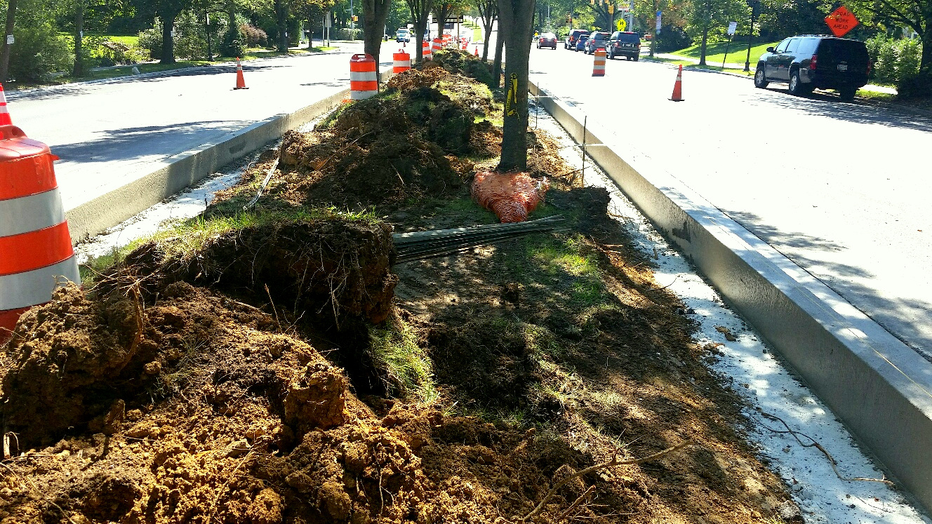 Photo from last September of Roland Avenue median strip torn up by contractor M. Luis to install new curbing ordered by the city. (Mark Reutter)