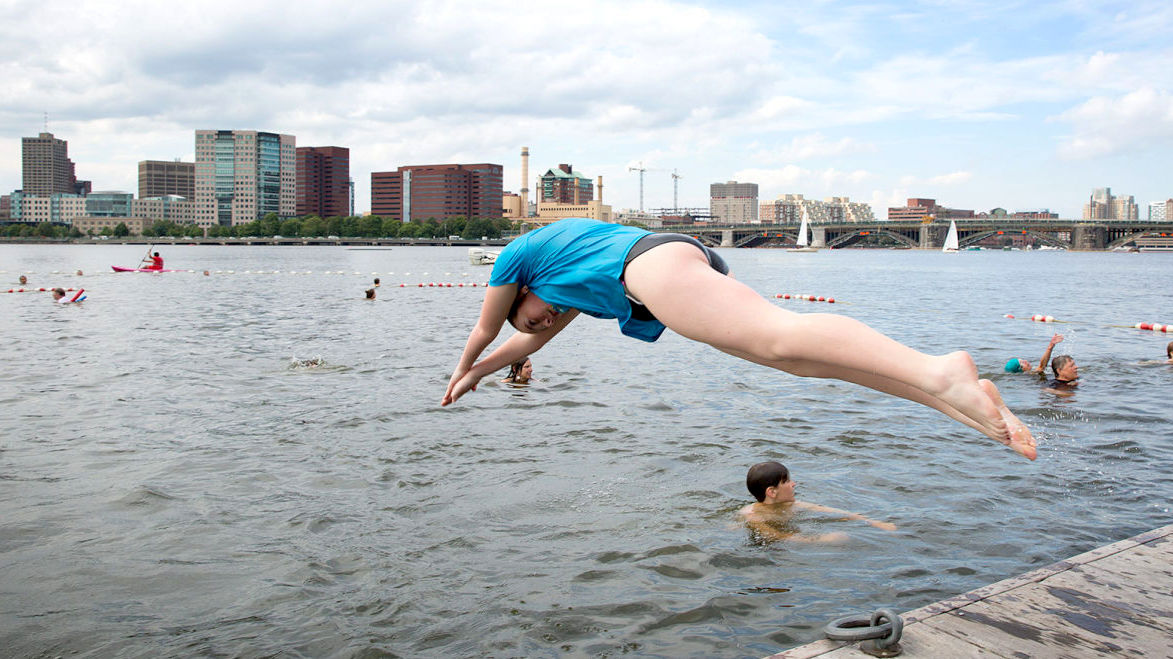 Participants in the 2015 Charles River swim event dive right in. (thecharles.org)