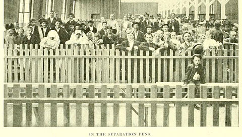 separation pens at B&O's locust point