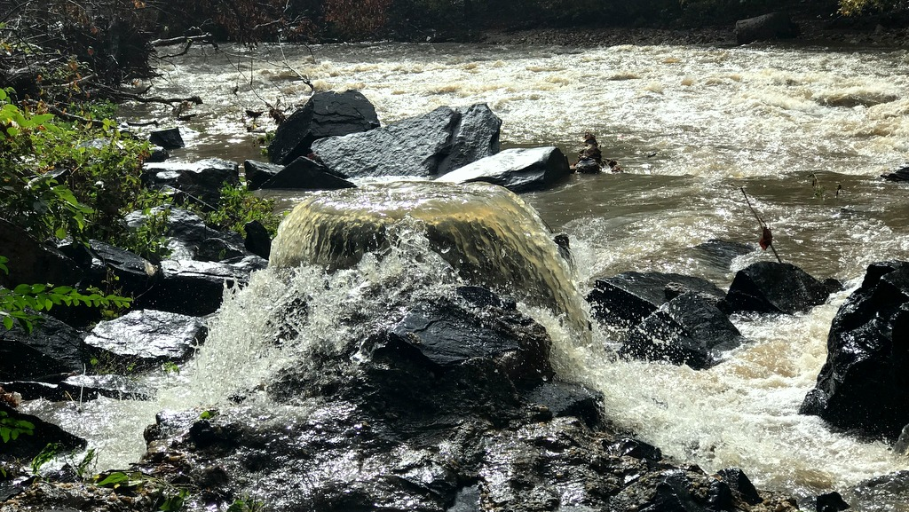 Sewage pouring into Herring Run at 1 p.m. today near the Belair Road bridge. (Mark Reutter)