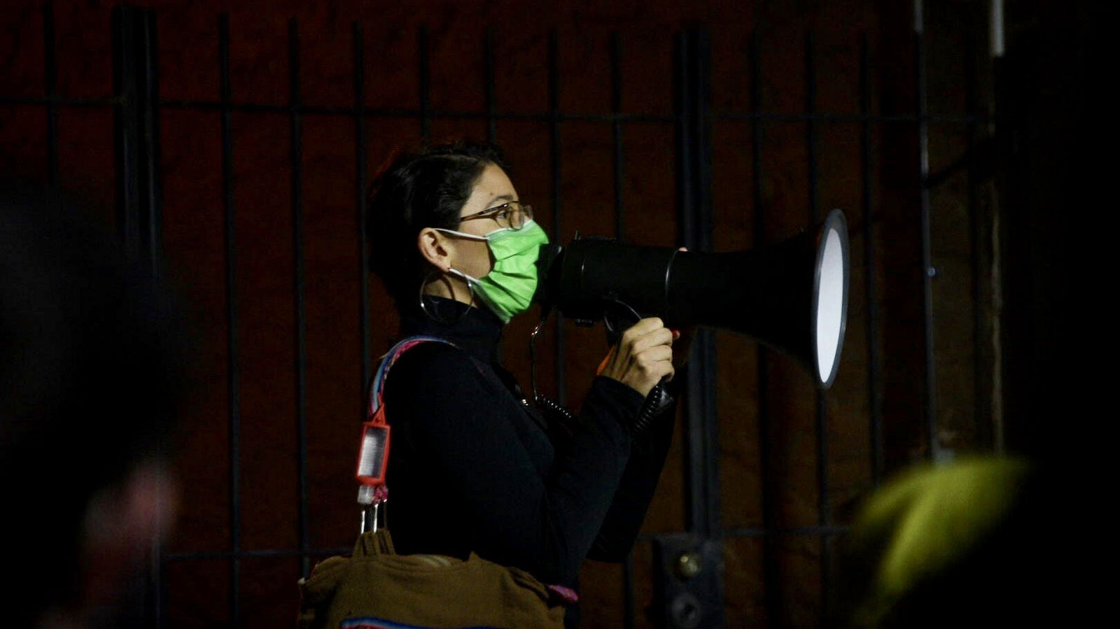 Franca Muller Paz addresses anti-incinerator protest outside Mayor Jack Young's house. (J.M. Giordano)