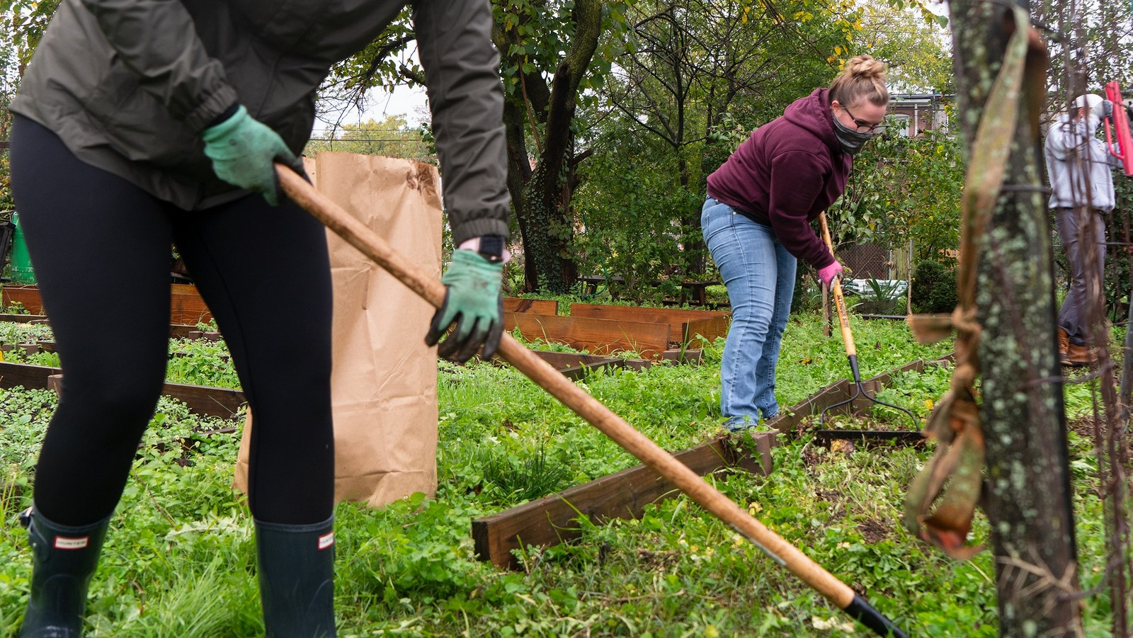 Volunteers clear out weed-choked beds at East Baltimore's Duncan Street Miracle Garden. (Photo credit: Ellin & Sharpe)