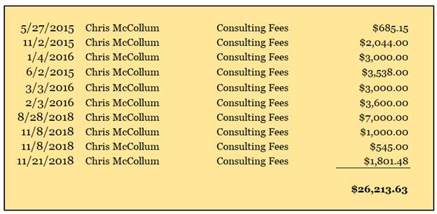 Newly revealed payments made to McCollum while he was treasurer of the Victory Slate. (State Board of Elections)